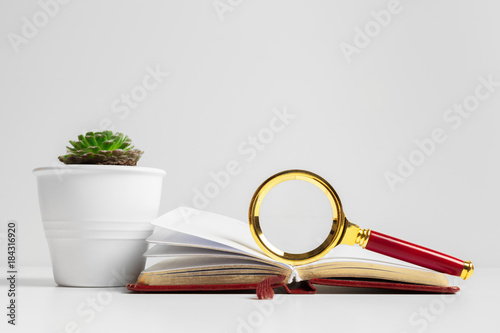 Wall mural Vintage magnifying glass on a book