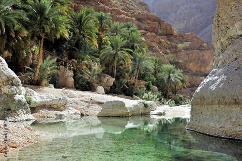 Foto Murales Wadi Shab, oasis, between the mountains, Oman