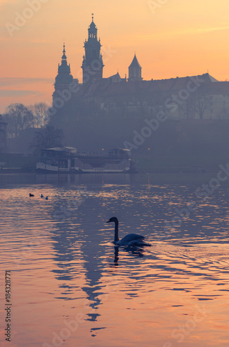 Krakow, Poland, Wawel Castle and Wawel cathedral in the morning over Vistula river and swans © tomeyk
