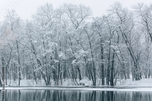 Staande foto Bleke violet Winter lake beautiful landscape. Trees covered with snow.
