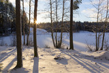 Snowy winter forest in Finland. Winter wonderland on a cold morning. Sunrise behind the trees. Snow covered ground. - 184338128