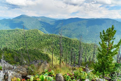 Plexiglas Olijf Top of Kokuya Mountain. Altai Republic. Russia