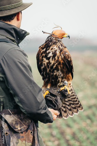 Falconer with hawk on the hand Poster