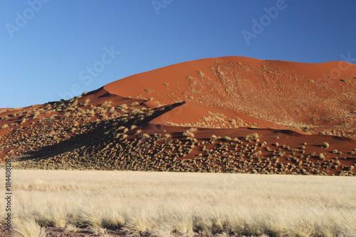 Tuinposter Beige morgenliche Dünenlandschaft mit roten Ockerdünen bewachsen mit gelbem Savannengras.Where: Sesriem Canyon bei Solitaire, Namibia.