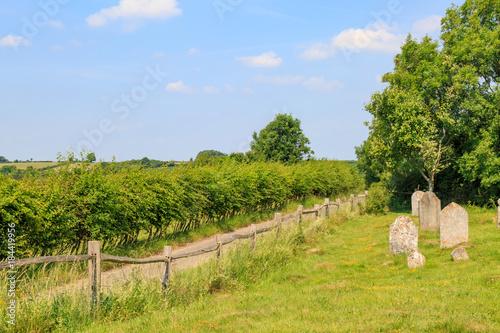 Keuken foto achterwand Blauwe hemel A Churchyard and Rural Scene