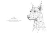 Abstract mash line and point head of the dog origami on white background with an inscription. Starry sky or space, consisting of stars and the universe. Vector illustration