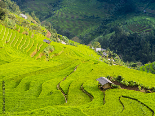 Deurstickers Rijstvelden Stunning landscape of terraced rice field in the mountains of Mu Cang Chai, Yen Bai Province, northern Vietnam