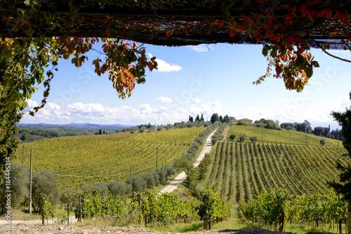 Fotobehang Wijngaard Auf dem Hügel die Villa der Tenuta Di Monaciano