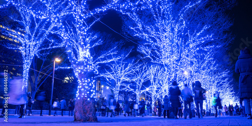 Illuminated street in Shibuya, Tokyo 青の洞窟