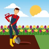gardener digging a hole with shovel in the garden landscape vector illustration - 184454785