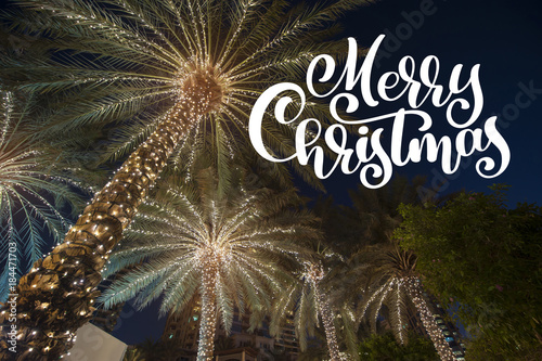 Aluminium Palm boom christmas background palm tree in the night city with photo overlay Merry Christmas, greeting card
