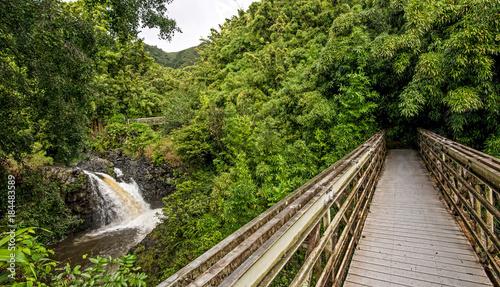 Aluminium Bamboe Pipiwai Trail Bridge leads into the bamboo forest