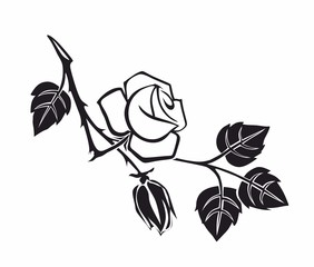 rose1212a