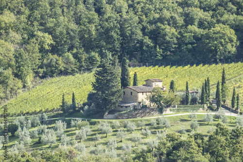 Fotobehang Wijngaard Winery in Chianti in Greve, Tuscany, ,Italy