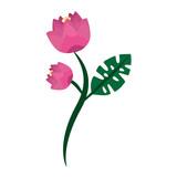 pink flowers stem leaf natural decoration vector illustration - 184499353