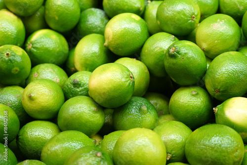 Poster Fresh green lime pile in harvest season