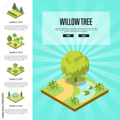 Tuinposter Groene koraal Natural parkland landscape with willow tree