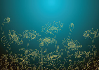Daisy field outline sketch hand drawing,Daisy wallpaper background