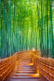 Bamboo Forest in Kyoto, Japan. © tawatchai1990