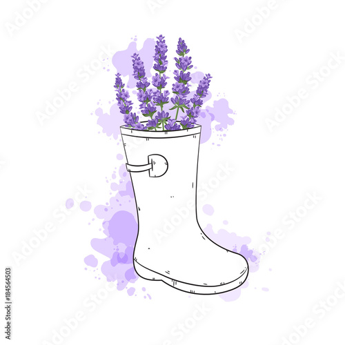 Fotobehang Planten Vector lavender illustration. Beautiful and elegant boquet of violet lavender flowers.