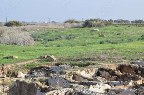In de dag Grijs spring field Cyprus