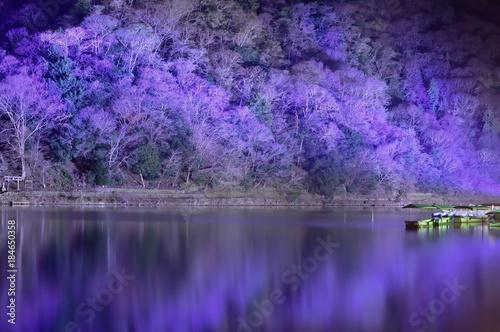 Deurstickers Kyoto 京都 嵐山花灯路ライトアップ