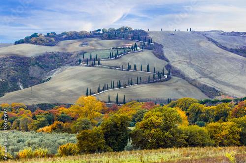 Fotobehang Freesurf Beautiful Tuscany countryside- winding road frim cypresses. Italy