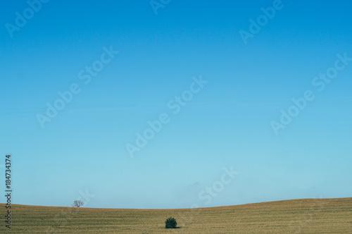 Foto op Aluminium Blauwe jeans Rural