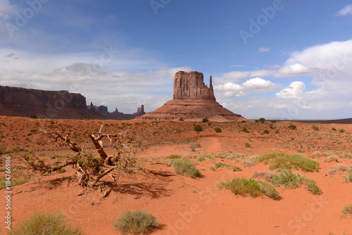 Fotobehang Koraal Desert Castles - Huge sandstone buttes, look like Castles of the Middle Ages, standing on desert floor of the Monument Valley.