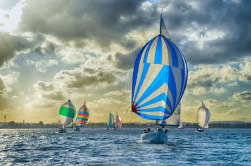 Segelboot, Spinnaker, blau, Himmel, Dramatik, segeln, sonne, Sonnenuntergang, Meer, Wasser