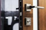door handle and latch of brass on veneer doors - 184790153