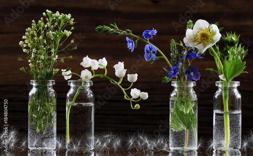 Fotobehang Lelietjes van dalen wild flowers and herbs
