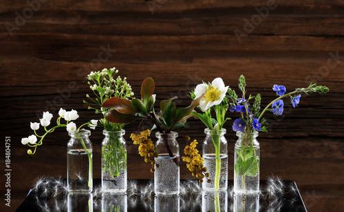 Plexiglas Lelietjes van dalen wild flowers and herbs