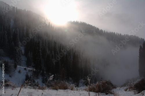 Tuinposter Donkergrijs Foggy evening in a winter mountains, landscape, wallpaper.