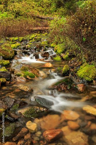 Alpine stream in the Wasatch, Utah, USA. © Johnny