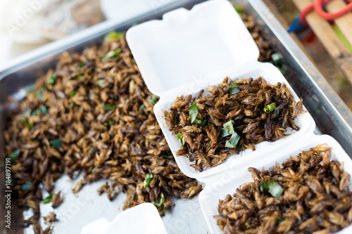 Thai snack fried crickets