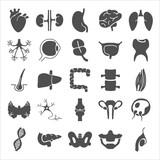 Human anatomy simple icons set - 184910951