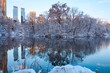 Central Park. New York. USA in winter