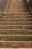 Dambulla in the Central Province - 184987316