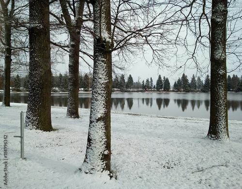 Winterlandschaft - verschneite Bäume am See - Schneefall