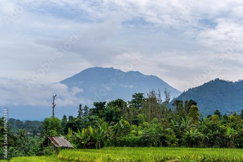 Fotobehang Centraal-Amerika Landen Agung volcano eruption view near rice fields, Bali, Indonesia