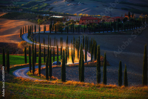 Poster Toscane Tuscany, rural sunset landscape. Countryside farm, cypresses trees, green field, sun light and car on the road. Italy, Europe.