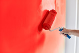 Male hand painting wall with paint roller. Painting apartment, renovating with red color paint
