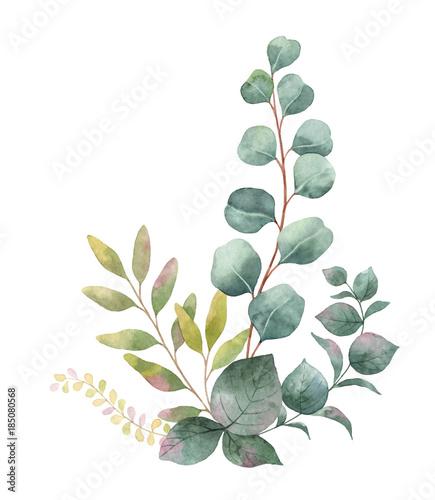 aquarellvektorblumenstraus-mit-grunen-eukalyptusblattern-und-niederlassungen