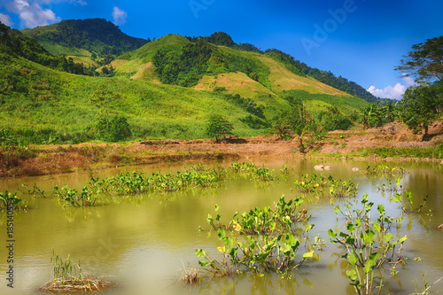 Fotobehang Honing Beautiful landscape, pond on the foreground. Laos.