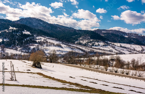 Foto Murales spring is comming. last days of winter landscape. rural field with weathered yellow grass covered with snow. village at the foot of the mountain ridge
