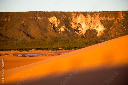 Fotobehang Oranje eclat Jalapão Dunes Region in Tocantins - Brazil
