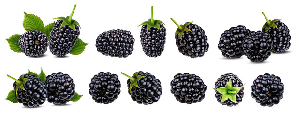 Fresh blackberry isolated on white background with clipping path © Ekaterina