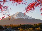 Fuji mountain with red maple leaf in foreground when autumn time in Japan.