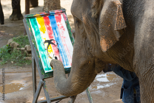 Aluminium Thailand Elephant painting in picture elephant and tree frame, Asia Thailand